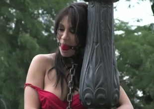 Sizzling darling has all over endure a kinky public punishment