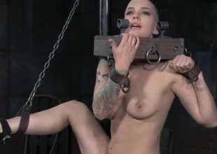 Hairless head spoil close by kinky bondage