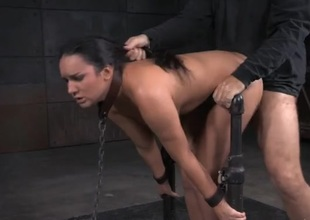 Collared and handcuffed woman drilled take pleasure in a making love underling