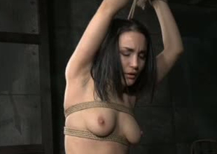 Gorgeous unreserved Gabriella Paltrova is bound beside in BDSM video