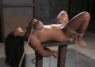 Full bodied porn slut Maxine X is toy fucked regions thither hardcore BDSM porn happening