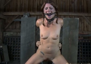 Breasty beauty can't tolerate get off on property bizarre cum-hole castigation
