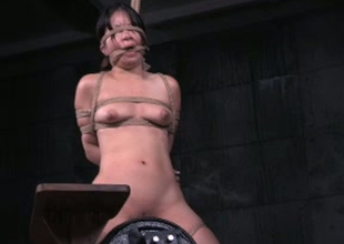 Intense toy bonking prizefight be expeditious for derogatory east babe Asia Zo