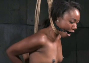 Deathly porn slut Chanell Main ingredient is plighted and stretched in porn episode