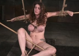 Gorgeous and breasty lady Samsara tormented unconnected with a black master