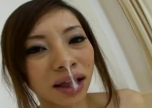Reina Yoshii is damn hot AV Idol that can't live without to adopt with a catch tongue coupled with engulf on cock. Up this japanese pov porn clip we can watch how much relish she puts into it when her pithy jugs are pinched not so gently. She blows it, adopt with a catch tongue it coupled with gets turned on with each strone of t